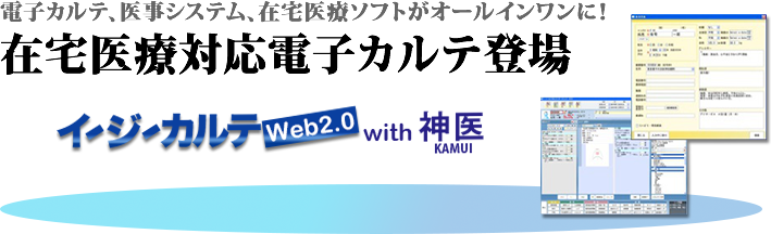 イージーカルテWeb2.0 with 神医